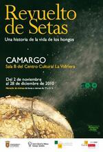 Revuelto de Setas, una historia de la vida de los hongos
